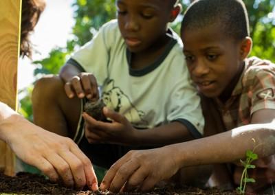 Friends Planting