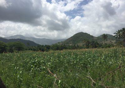 aquin farmland