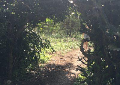 aquin farm trail